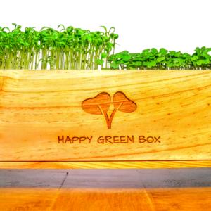 La Happy Green box